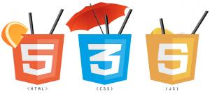 WordPress fejlesztés html css js